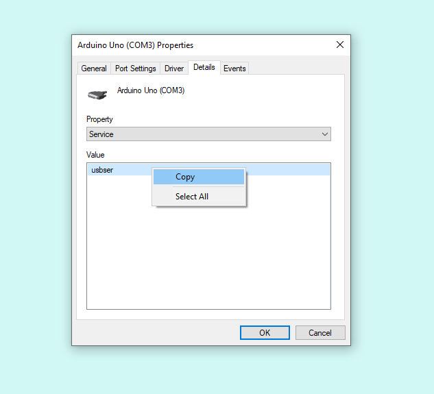 Copying the 'Service' value in Device Manager.